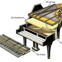 Piano Tuning and Repair in Macomb, Illinois